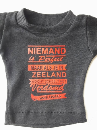 auto t-shirt niemand is perfect maar ... zeeland